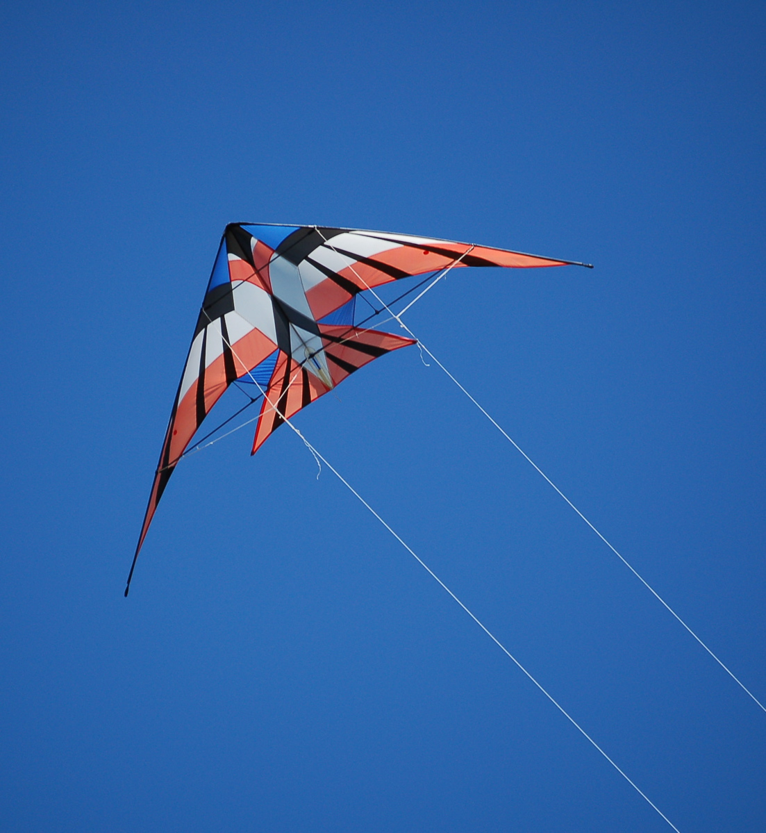 cool kites dalton art portfolio